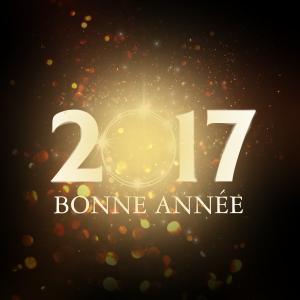 voeux-agyls-2017